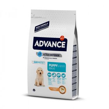 Advance Maxi Puppy - 12 kg.