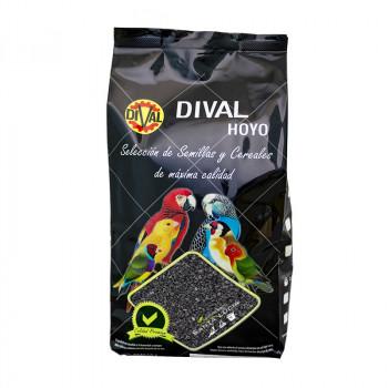 Carbón Vegetal Dival | 600 gr.