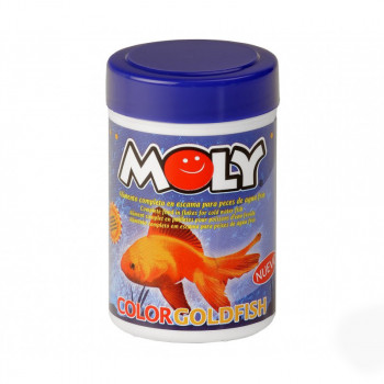 Moly Color Goldfish