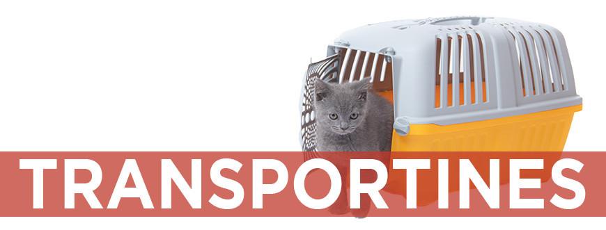 Transportines y bolsas de viaje para gatos