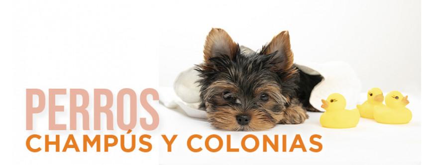 Champús y colonias para perros