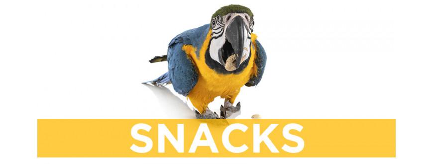 Snacks para pájaros y aves exóticas