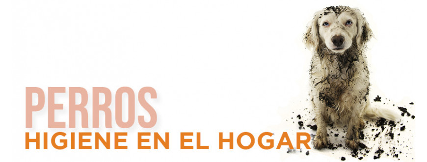 Perros Higiene en el Hogar