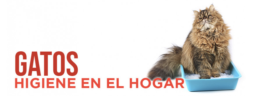 Gatos Higiene en el Hogar