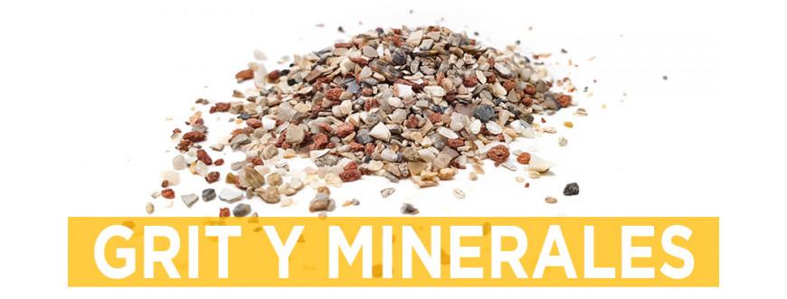 Grit y Minerales para aves