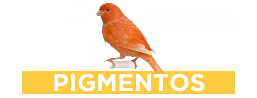 Pigmentos para aves