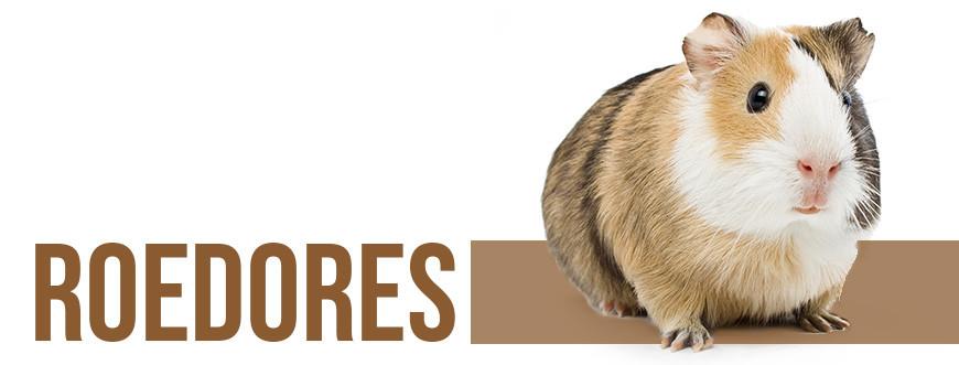 Tienda para roedores | todo para hamster y roedores