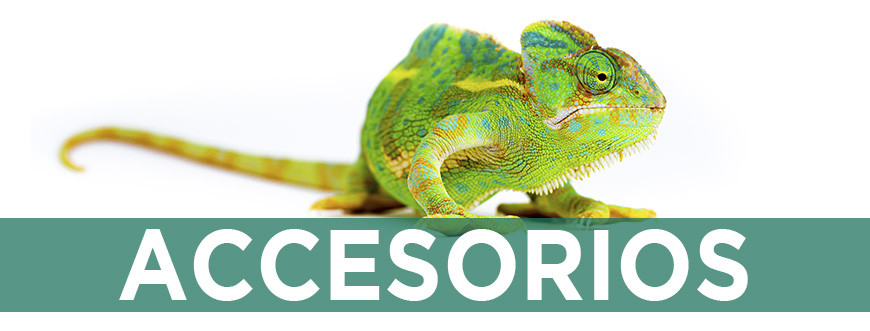 Accesorios para tortugas y reptiles