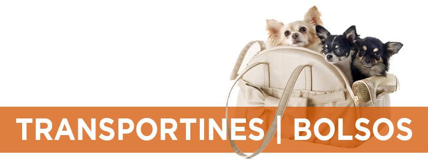 Transportines y bolsas de viaje para perros