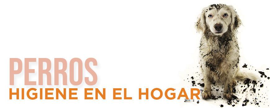 Higiene en el Hogar