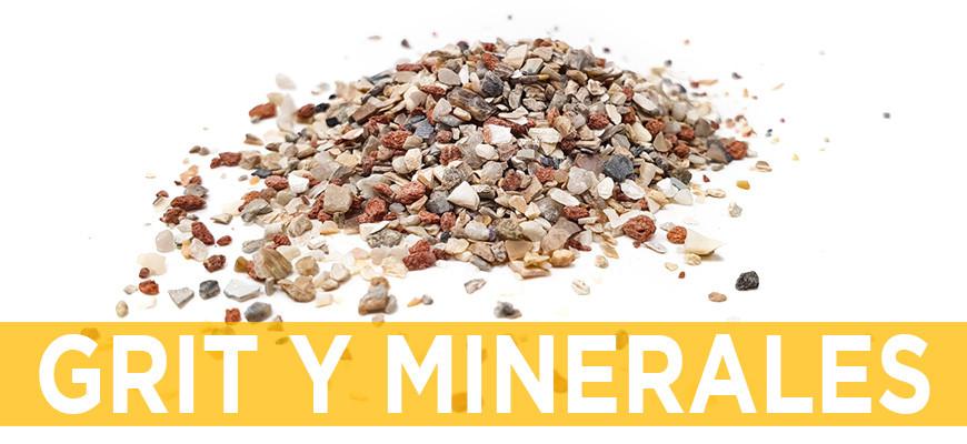 Grit y Minerales