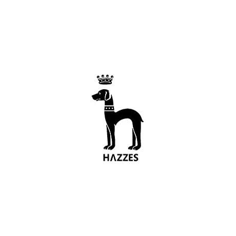 Hazzes